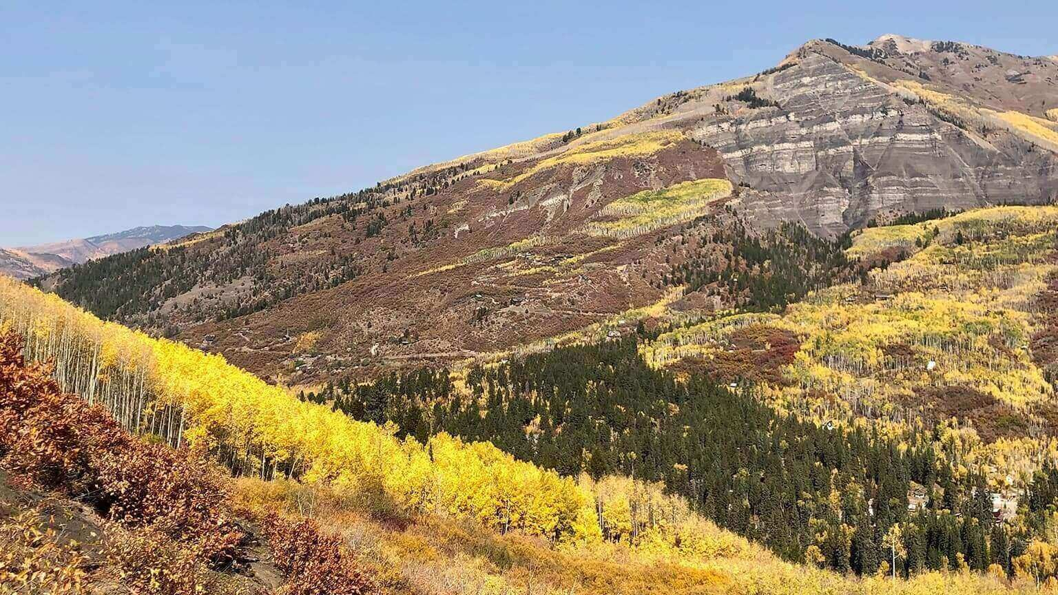 High alpine leaf peeping of Aspen groves outside of Carbondale, Colorado