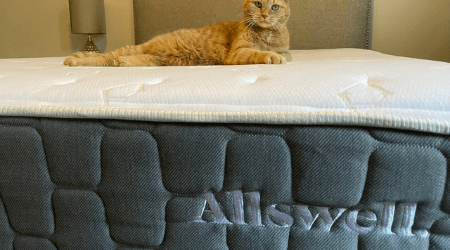 Allswell The Brick mattress review