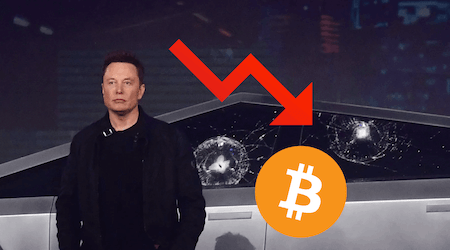 Elon Musk crashes Bitcoin price by canceling BTC payments for Teslas