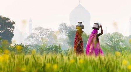 Rural Broadband Plans in India