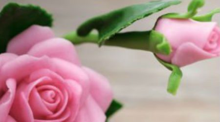 Mother's Day gift ideas | 2020