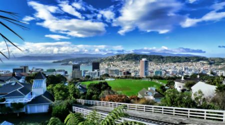 10 things to do in Wellington in 2020
