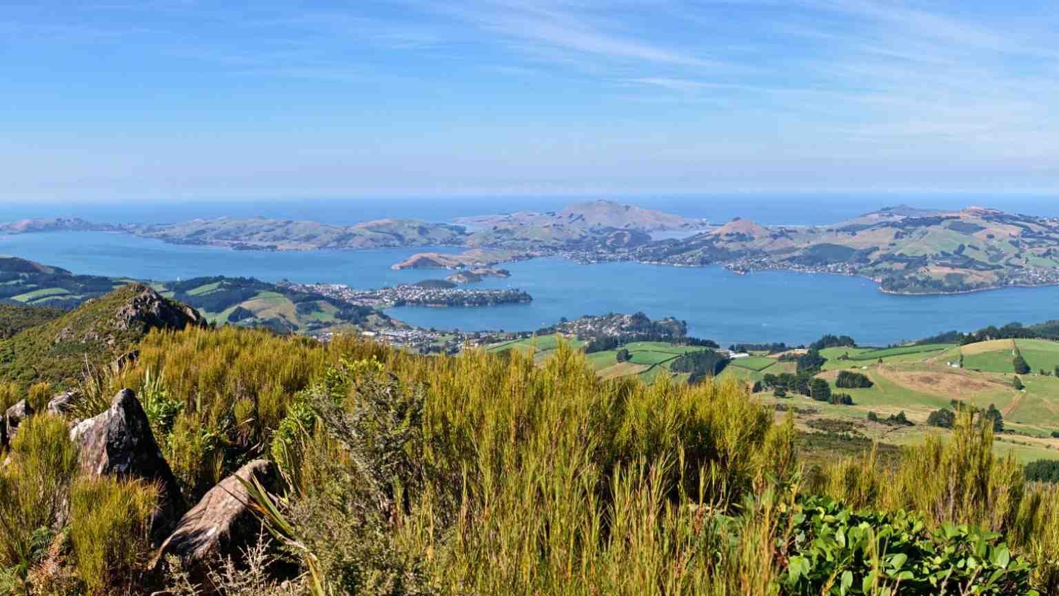 Cheap flights to Dunedin for 2020