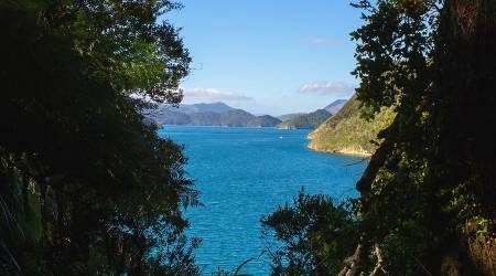 Picton accommodation | Where to book in the Marlborough Sounds