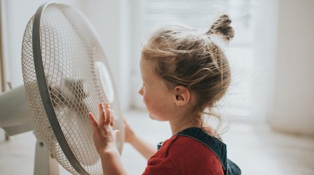 Where to buy electric fans, floor fans and desk fans online