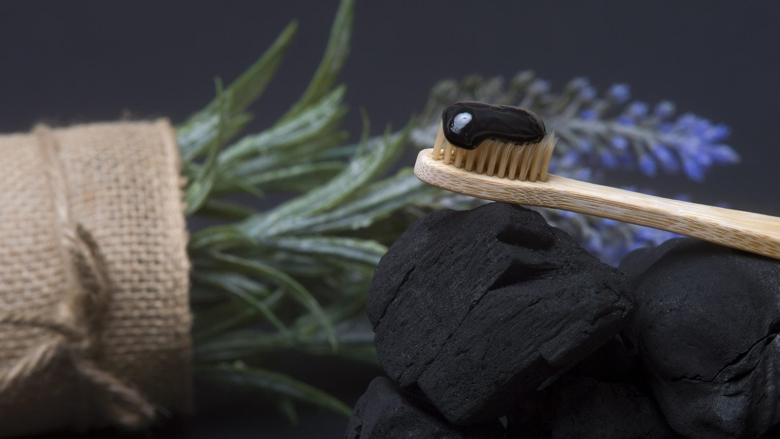 Activated charcoal toothpaste on coal briquettes with natural plant background