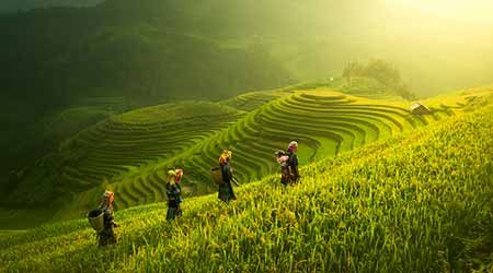 Best Vietnam tours for 2020