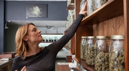 How to legally start a cannabis business