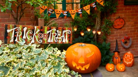 Where to buy Halloween decorations online in 2021