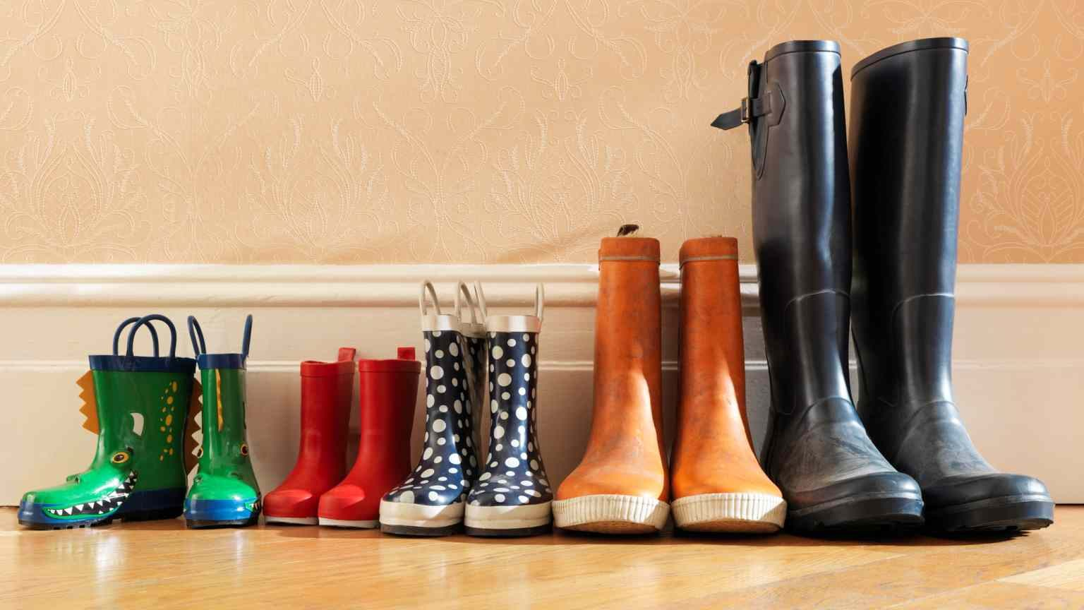 adventure, Anticipation, Choice, Comparison, Contrasts, Domestic Life, holidays, Horizontal, kids crocodile wellies looking to camera, Lifestyles, Medium Group of Objects, No People, odd one out, Order, Photography, Scale, suburban home, Togetherness, Variation, Weekend Activities, Wellington Boot, wellington boots in a row in hallway,adventure