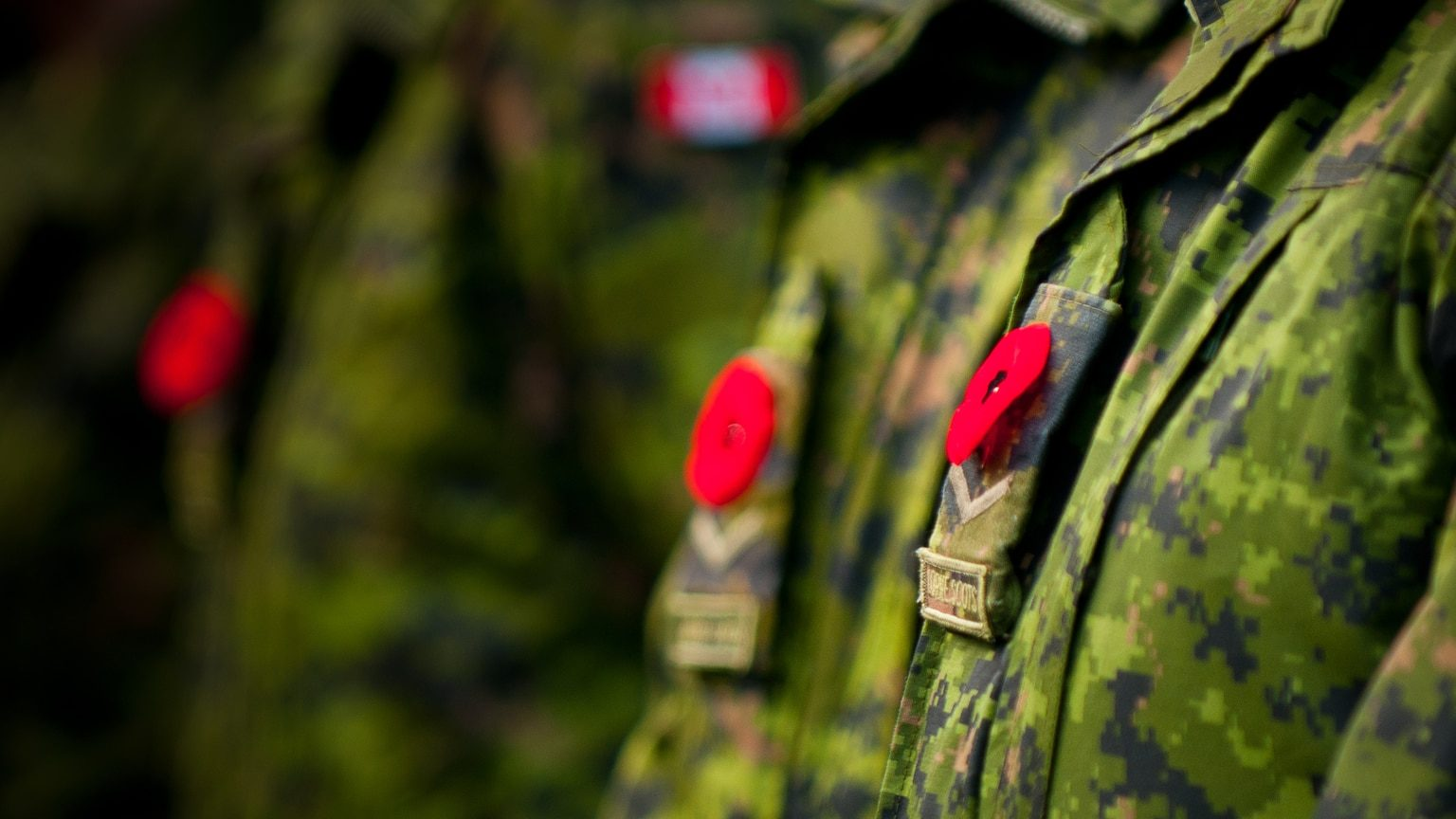 Closeup of poppies pinned to military uniforms