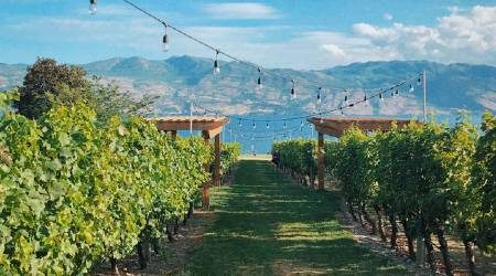 Kelowna hotels | Where to stay in the Okanagan Valley