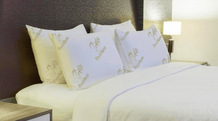 Where to buy bamboo pillows online in Canada 2021