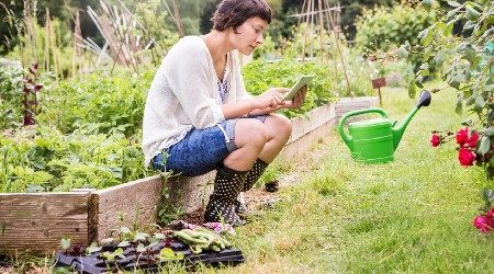Where to buy home gardening supplies online in Hong Kong