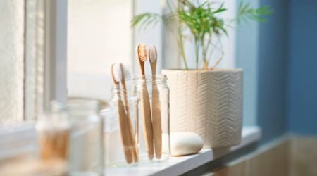 Where to buy bamboo toothbrushes online in Hong Kong 2021