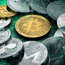 dia de negociação de futuros para manequins onde comprar bitcoin cash no brasil