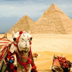 Egypt_Featured_Image