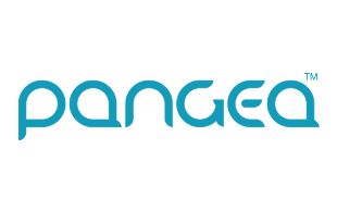 Pangea Money Transfer review