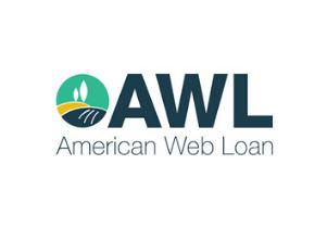 American Web Loan installment loans review