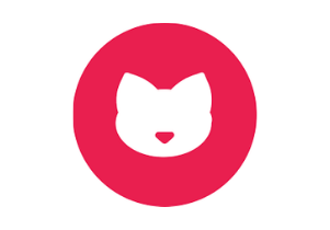 Cash Kitty Loans review