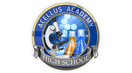 Acellus Academy online private school review