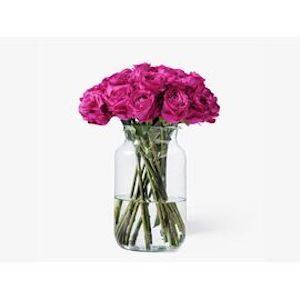 Mr Roses